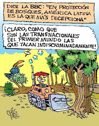 Dejen nuestros bosques